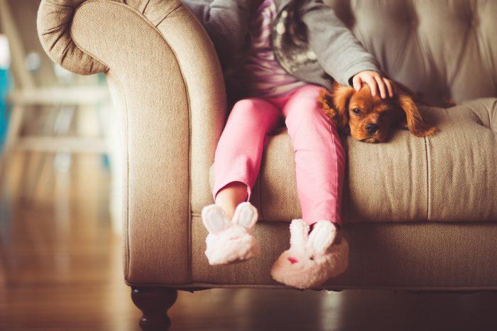 Hundens Hälsa Och Skötsel